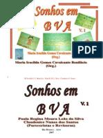 Livro Sonhos Em BVA - Volume 1