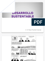 Principios de Sustentabilida