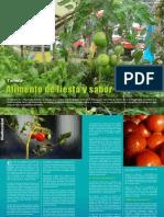 Generaccion Edicion 117 Biodiversidad EL TOMATE 696[1]