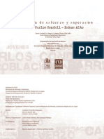HB Carlos Condell Rahue Alto-Osorno01