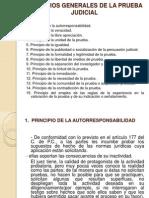 Principios Generales de La Prueba Judicial