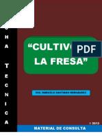 Ficha Técnica
