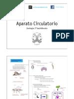 CIRCULATORIO ZOOLOGÍA.pdf