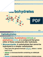 25 Carbohydrates.