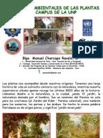 Importancia Plantas UNP