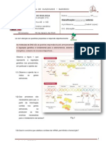 4_teste-bio12_2009-v1