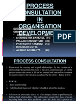 Process Consultation
