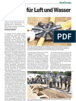 HUMBERG Wurzelstern Aufsatz BaumZeitung_Rostock