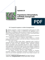 10.Organizarea Intreprinderii, Activitate Manageriala Dinamica