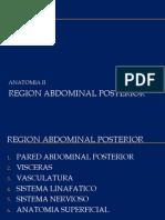 3.5 Region Posterior Del Abdomen