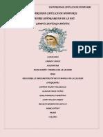 PASOS DE PLANDISMO.docx
