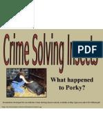 crimesolvinginsects