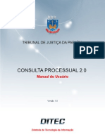 Manual Consulta Processual2