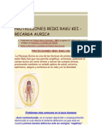 Proteccion Raku-recarga Aurica