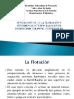 Presentación La Flotacion