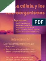 LA CÉLULA Y LOS MICROORGANISMOS
