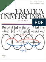 Matematica Universitaria Algebra