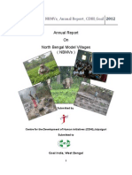 Annual Report2012 CDHI Final 6.2
