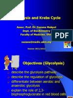 2.Glycolysis Kreb O.P