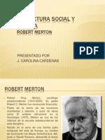 Estructura Social y Anomia
