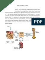 Metabolisme Kalsium.docx