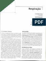 RESPIRAÇÃO - Cinesiologia Para Fisioterapeutas