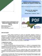 QUI-00020 - Caderno Consulta Pub Plano Bacia RB 2008