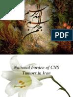 Final Presentation (National Burden of CNS Tumors in Iran)