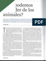 Animal a Das