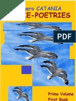 Calogero Catania's Poesie- Poetries