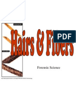 hairsfibers083