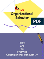 Fundamentals of Organization Behavior.ppt