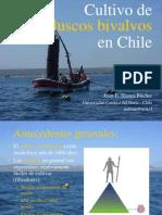 Cultivo de Bivalvos en Chile
