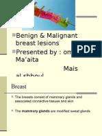 Breast.omar& Mais.6th(Modified)