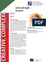 Successful and Agile Collaboration