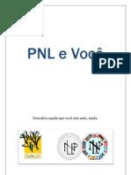 PNL e Você1.pdf