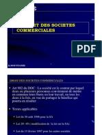 51037267 Seminaire Droit Des Societes 10