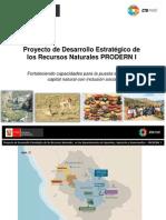 Proyecto de desarrollo estratégico de los recursos naturales