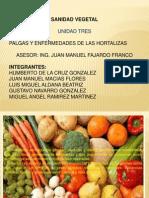 Presentacio Plagas y Enfermedades de Las Hortalizas