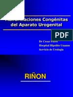 Malformaciones congénitas del aparato urogenital.pptx