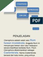 Filum Ctenophora ppt