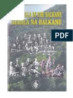 Guarillas in the Balkans
