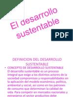El Desarrollo Sustentable 123