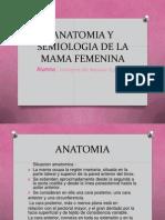 Seminario Anatomia y Semiologia de La Mama Femenina