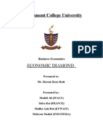 Final Report of Economic Diamond