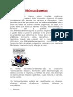 Hidrocarbonetos.docx