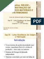 Cap.II - Lotes Econômicos - Cap 9 livro - 500.030 [Valuno]