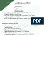 Act. Subjecte i CN