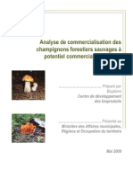 Analyse-commercialisation-champignons-potentiel-commercial.pdf