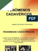 21566496 Los Fenomenos Cadavericos